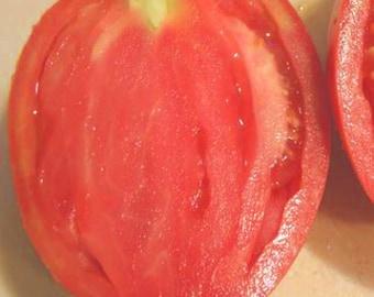 Pink Oxheart Tomato, heirloom 10+ seeds