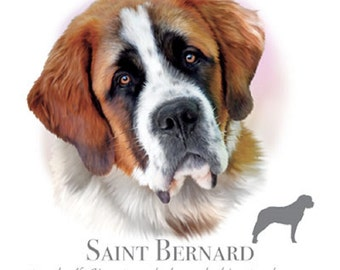 """SAINT BERNARD dog fabric with Phrase  on One 18 x 22 inch Fabric Panel for Sewing. Actual picture is of 10""""x10 1/2"""" on white background."""