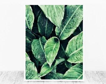 Green Leaf Print Leaves Printable Nature Print Digital Photograph Nature Printable Art Leaf Artwork Instant Download Leaves Print Decor Gift