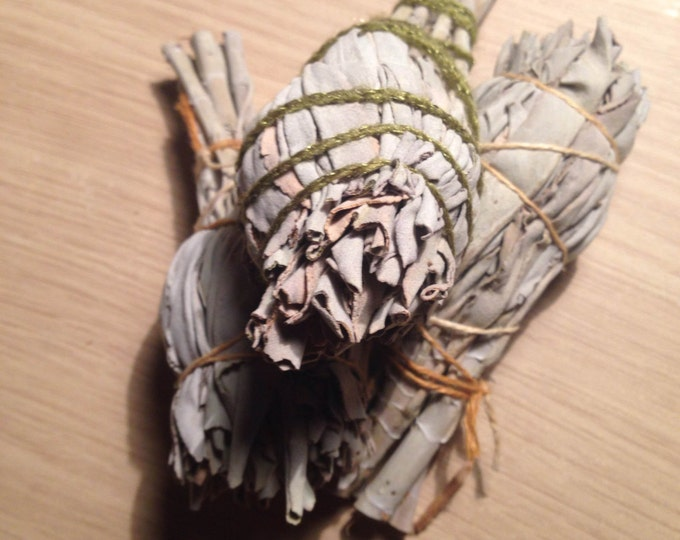 White Sage Stick (Californian) - Small  4 inch (Premium Quality)