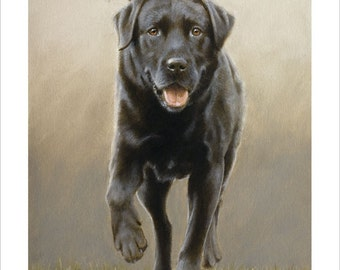 Black Labrador Retriever Limited Edition Print, At the end of the day.  Signed and numbered by Award Winning Artist JOHN SILVER. JSFA92