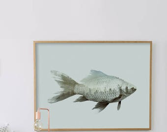 Fish Art, Canvas Effect