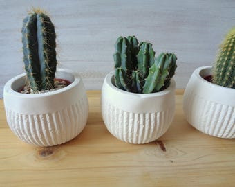 Ceramic plant pot, Set of 3 planters, Succulent planter, Geometric Planter, Cactus Planter, Concrete Succulent Planter
