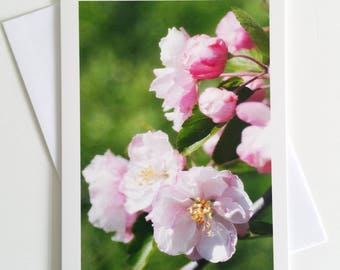 Crabapple Blossoms - fine art photography greeting card