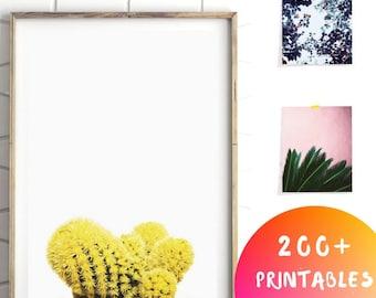 Minimalist Botanical Art, Succulent Print, Succulent Wall Art, Succulent Art, Yellow Cactus Decor, Cactus Succulent Art
