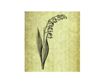 Lily of the Vally Rubber Stamp~Flower~Wild Flower~Easter~Spring~Cling Unmounted Stamp~Mountainside Crafts~Garden~Large Cling Stamp (54-09)