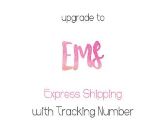 Express Mail Service