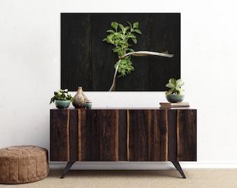 oregano // food photography print // kitchen decor // dining room // canvas art // canvas print // rustic farmhouse wall art