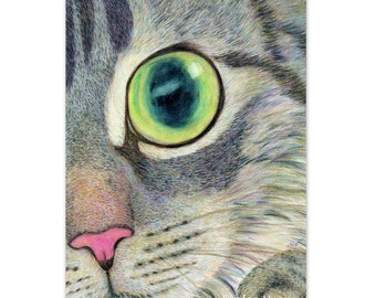 cat art print - grey tabby cat drawing, digital print - you found me - realistic cat face drawing , cat lover's gift, nursery room decor