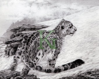 "KG Cards ""Snow Leopard"" Greeting Card"
