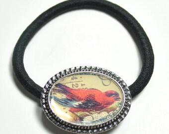 Scarlet Tanager Ponytail Elastic Hair Tie