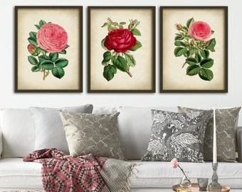 Botanical print set of 3, flower print set, roses, red rose print, pink rose print, botanical poster, botanical wall decor