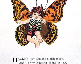 Tawny Emperor Butterfly, Goatweed Emperor Butterfly - 1914 Antique Book Page - Butterfly Babies, Butterfly Children - 9 x 6