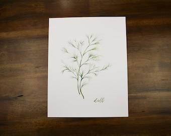 Dill Watercolor DIGITAL DOWNLOAD