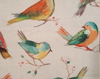 All a Twitter - birds
