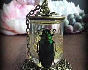 Jewel Beetle Necklace