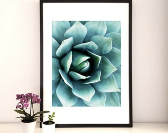 Cactus Print,Succulent Print, Cactus Wall Art, Succulent gifts,Cactus plant, Cactus decor, botanical prints,tropical leaf print