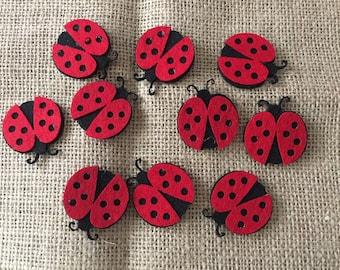 10 felt ladybug