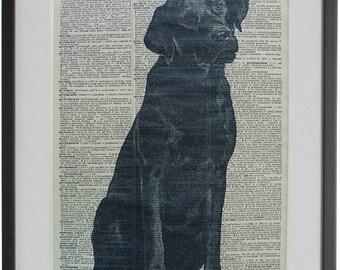 Labrador Black Dog Print No.575, black labrador art, labrador retriever poster, dog poster, dog home decor, dictionary art