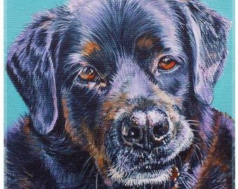 custom, Hand painted, original pet portrait, OOAK, colourful, acrylic painting, pet, animal, cat, dog, contemporary art, pet memorial