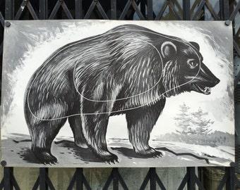 Vintage Bogenschießen Ziel eines Bären