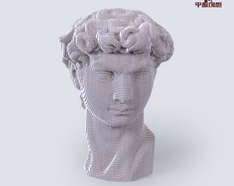 Michelangelo's David Head    - DIY Cardboard Craft
