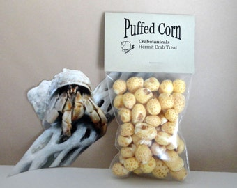 Hermit Crab Food Treat Puffed Corn all natural single ingredient pet food treat for rodents and crabs