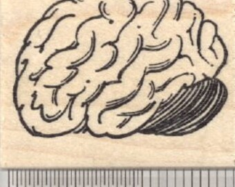 Brain Rubber Stamp E28609 Wood Mounted