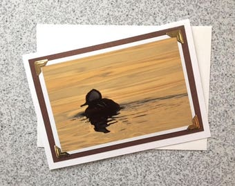 Hooded Merganser - Handmade Greeting Card // Duck Card// Nature // Photography // Photo Card // Sunset Merganser // Duck Swimming