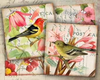 Bird - coaster - 4 x 4 inch - set of 4 cards - digital collage sheet