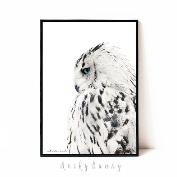 Owl wall art print black and white printable poster instant download bird printable art modern owl print modern animal wall art