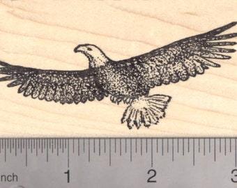 Bald Eagle Rubber Stamp, Bird in Flight J4813 Wood Mounted