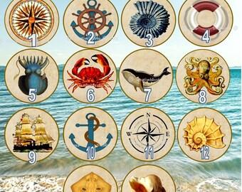 Nautical Sea Creatures Wood Drawer Knobs on Cherry Wood Knobs 1.5 Beach Nautical Wood Drawer Pulls
