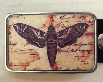 Insect Belt Buckle.   Moth Belt Buckle.  Insect Art.  Delicate moth wings on this beauty.