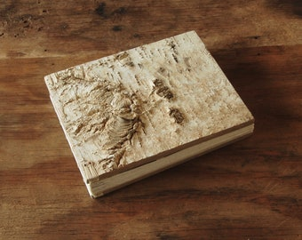 rustic wedding guest book or journal - birch bark cabin guest book - champagne natural unique wedding anniversary gift ready to ship
