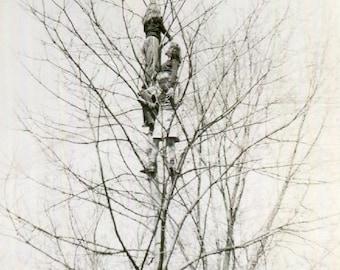 Vintage Photo..Tree Climbers, 1940's Original Found Photo, Vernacular Photography