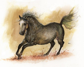Andalusian horse original pen and watercolour painting