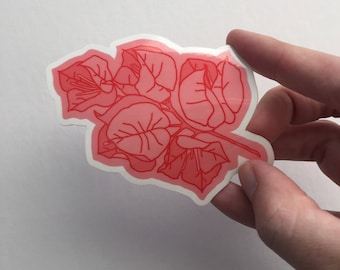 Bougainvillea Sticker