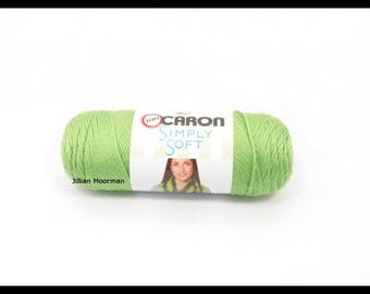 Caron Simply Soft Yarn, Pistachio, 6oz