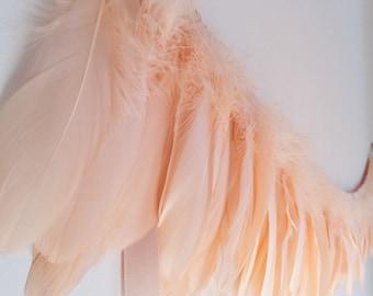 Peach Feather Garland, garland for wedding, wedding decor, Baby Shower, garland for nursery, nursery decor, garland for girls, feathers