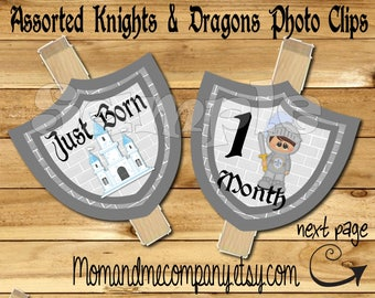 Knights and Dragons photo banner Photo clip holder First year photo clips Month photo banner monthly banner First birthday Medieval banner