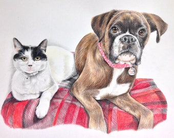 Dolly & Bean - Custom Pet Portrait Example - Dog Portrait - Cat Portrait