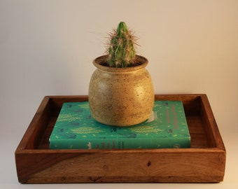 Cactus Pot / Planter