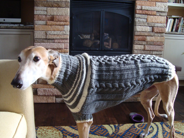 dog/ greyhound sweater knitting pattern PDF file ONLY! from pltsou ...