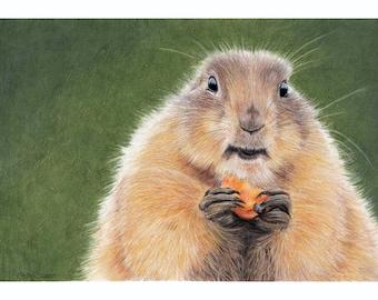Prairie Dog A4 Art Print, Wildlife Art