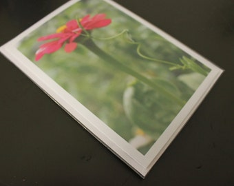 "Blank Photo Greeting Card, 5"" x 7"", 'Zinnia Swirl'"