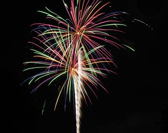 Fireworks Flowers Print #3 - Great Christmas gift for anyone!