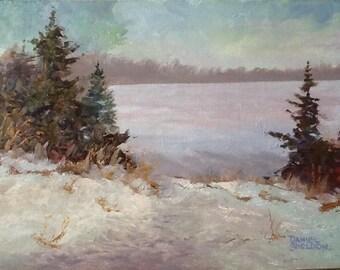 Richmond Lake Ice