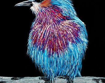 Lilac breasted roller bird, colourful bird painting, bird portrait
