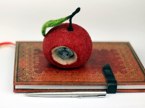 Deko apfel rot best apfel gala rot cm st with deko apfel for Apfel dekoration